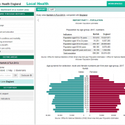 PHE Local Health : rapport