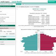 PHE Local Health: report