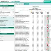 PHE Local Health: summary